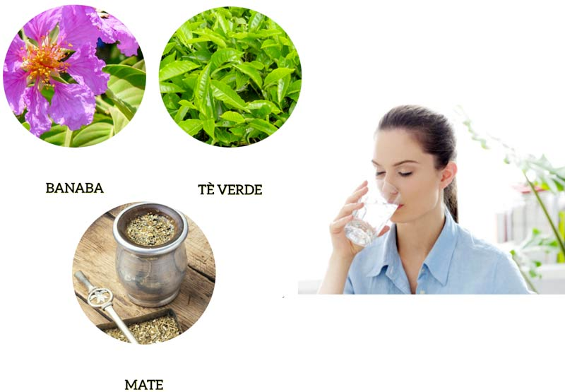 Ingredienti di Re Lipo Green